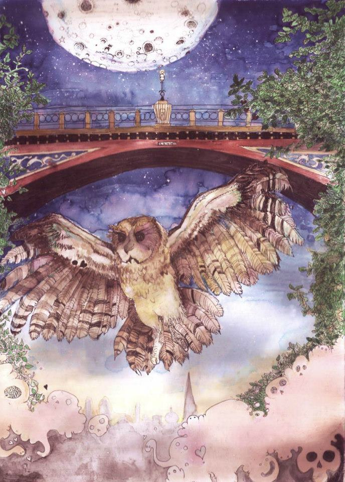 Owl flying under the 'suicide bridge', Archway Road, Highgate. I never see them, but i hear them.