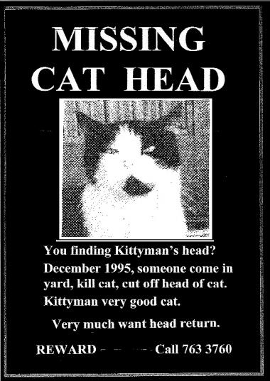 missing cat head