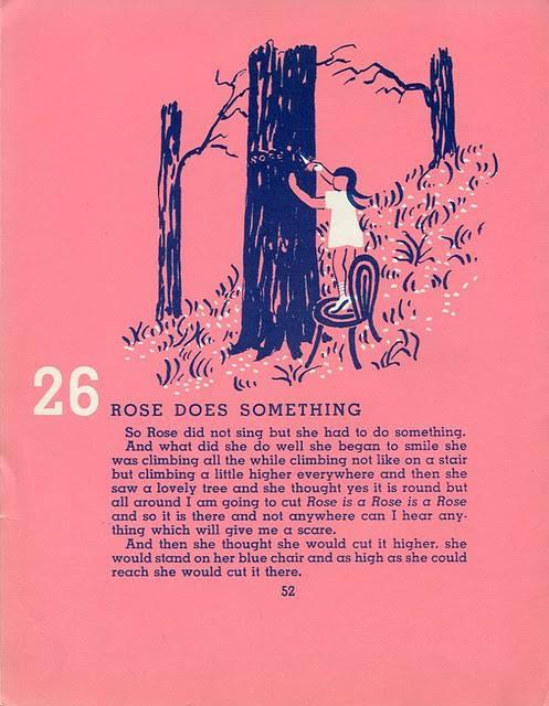 stein rose